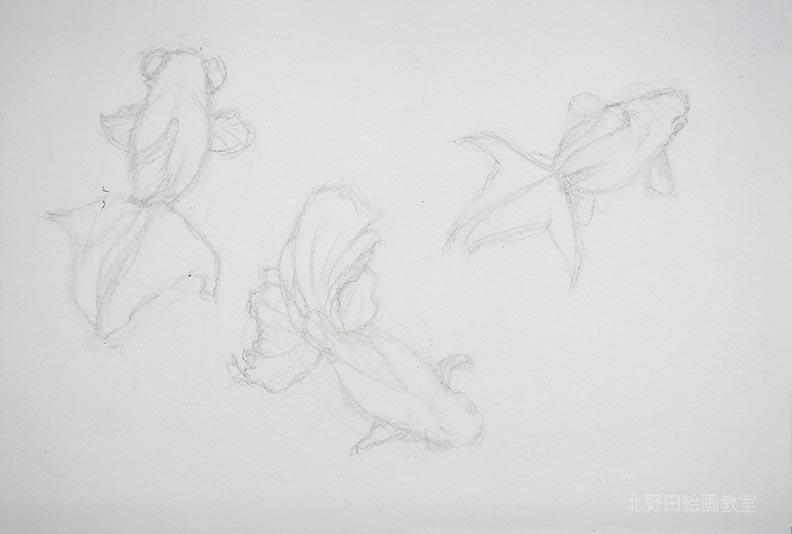 水彩色鉛筆の描き方(金魚)2