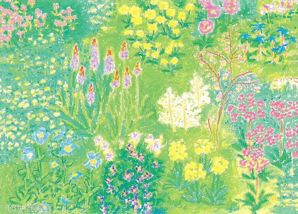 オイルパステル画(野の花)全体