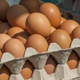 7 Fakten rund ums Ei