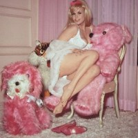 Pinups Perverting With Pink Plush