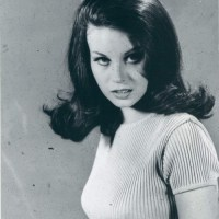 Lana Wood, Sweater Girl