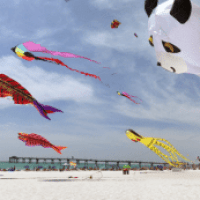 Kites and Beer ... Plenty of Reason to Celebrate in April
