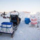 In Unalakleet, Lindner checks the team