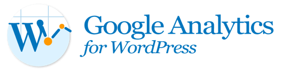 Google analytic in WordPress