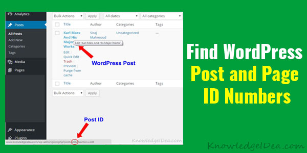 How To Find WordPress Post and Page ID Numbers