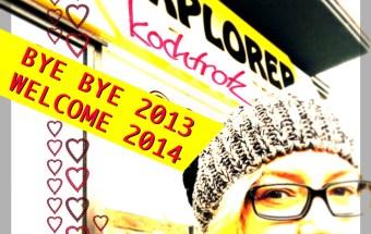 bybye2013-1