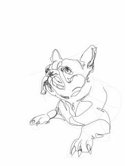 French Bulldog 03   Digital drawing, print available A4
