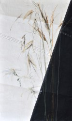 Grasses on sail