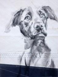 Dog on sail 04 Acrylic on sailcloth   50x70 cm   500€
