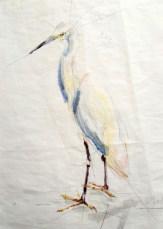 Cattle Egret / White Egret | Acrylic paint on sail | 50x70 cm | 795€