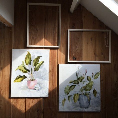 Paintings of plants on studio wall