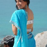 kajal-agarwal-hot-stills (1)