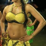 rajamahal-hot-stills (5)