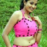 sri-devika-hot-stills (6)