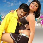 telugu-bgrade-movie-hot-stills (14)