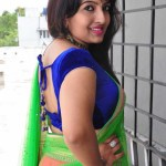 roshini-latest-hot-stills (19)