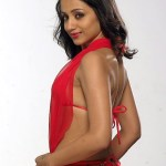 Actress Trisha Hot Stills (1)