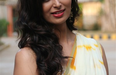 Actress Meenakshi Dixit (11)