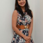 Yaman Movie Audio Launch (190)