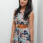 Yaman Movie Audio Launch (193)