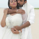 Annadurai Movie (3)