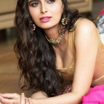 Actress Meenakshi Dixit (10)