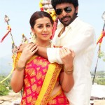 Pakka Movie (5)