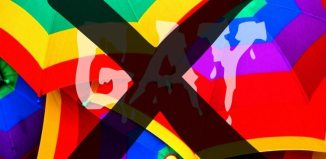dosa gay