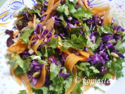 Purple Cabbage, Carrot and Coriander salad