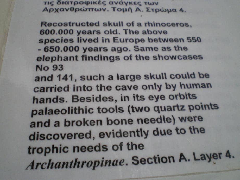rhino. descriptionJPG