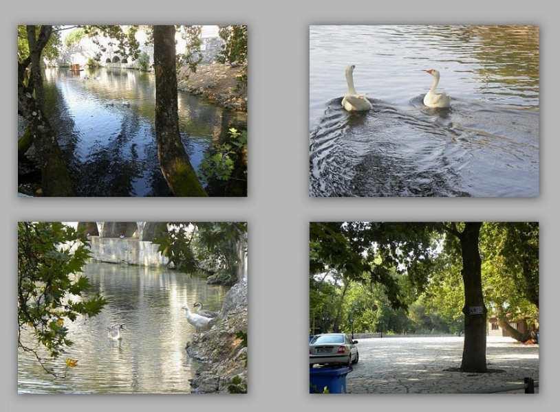 The springs of Evrotas river