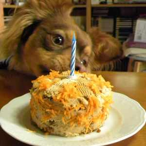 Carrot and Apple Doggie Cake with Frosting