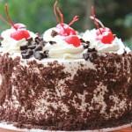 Black Forest Cake – Gateaux