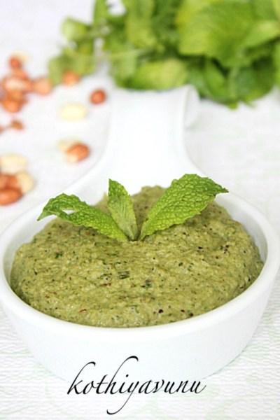 Peanut Mint Cilantro – Coriander Chutney Recipe