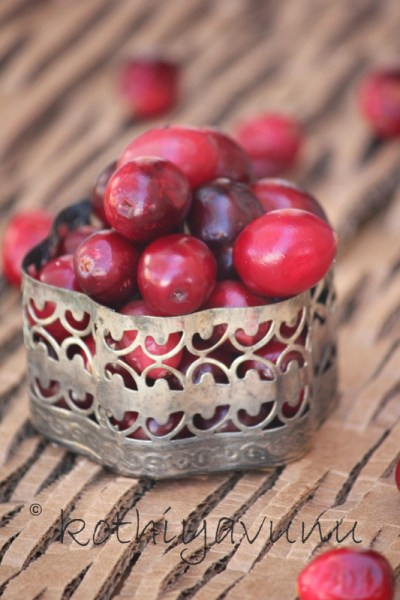 Indian Style Cranberry Chutney