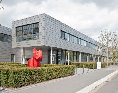 Gebäude, roter Hund