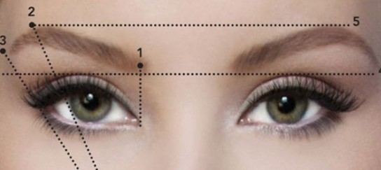 Conception et correction des sourcils