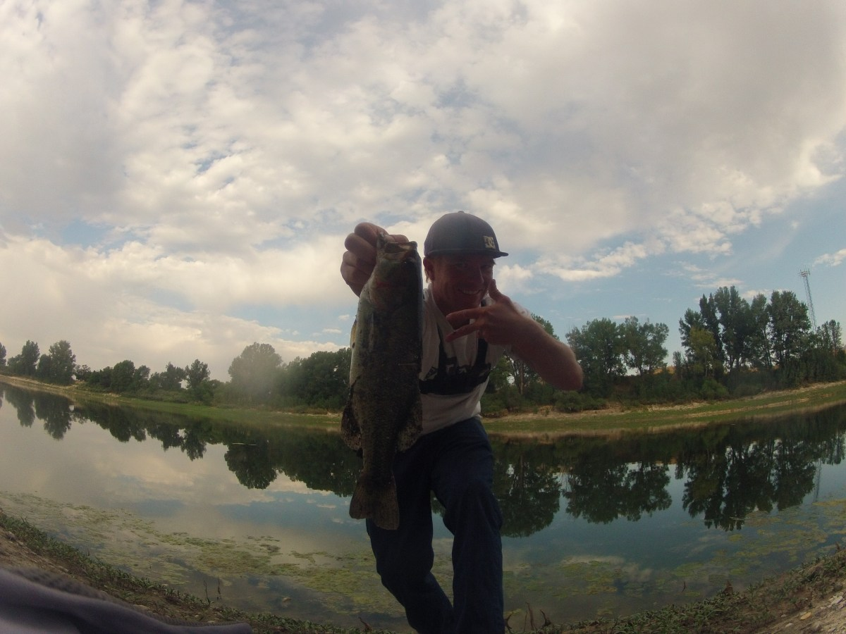 Bass Fishing Topwater Lures - What, Where, When, & How to catch bass on top!