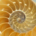 shell_002