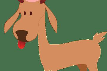 reindeer-307467_1280