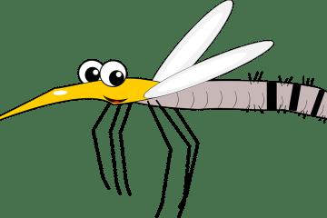mosquito-2323904_1280