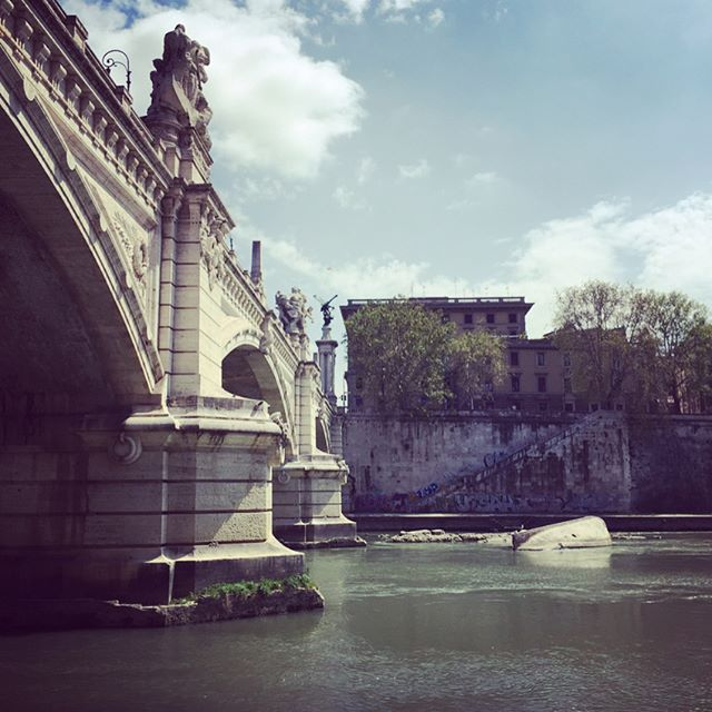 Beautiful walk along the Tiber #Rome #tiber