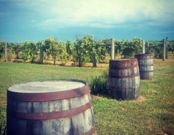 Kansas Wine: BlueJacket Crossing & Davenport Wineries