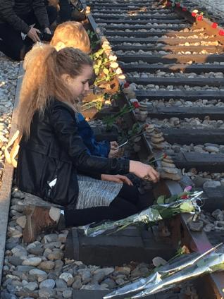 spoor met stenen en bloemen