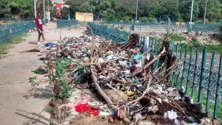 Garbage dump on halasuru lake