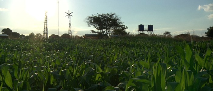 william-and-the-windmill-still