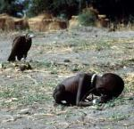 kevin carter - vulture
