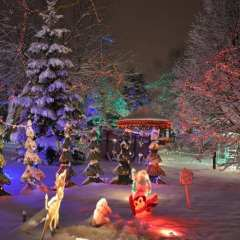 Updated: Christmas in the Park This Saturday and Dec. 5th