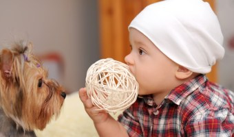 Good Pets for Families with Kids