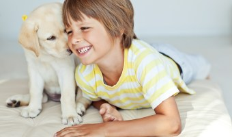 4 Reasons to Give Into Your Kid Who's Begging For A Pet